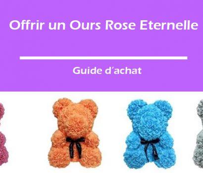 offrir un ours rose éternelle