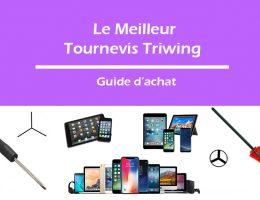 tournevis-triwing