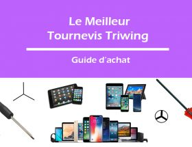 tournevis-triwing